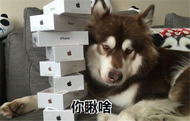 iPhone 8要来了