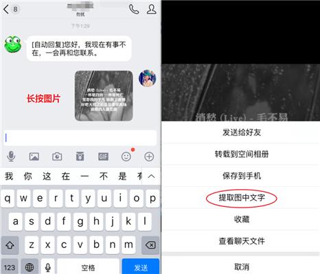 提取图中文字