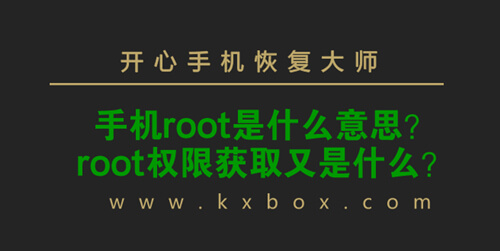 root是什么意思