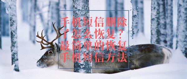 默认标题_公众号封面首图_2019.01.02